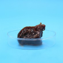 二硫化钨润滑脂